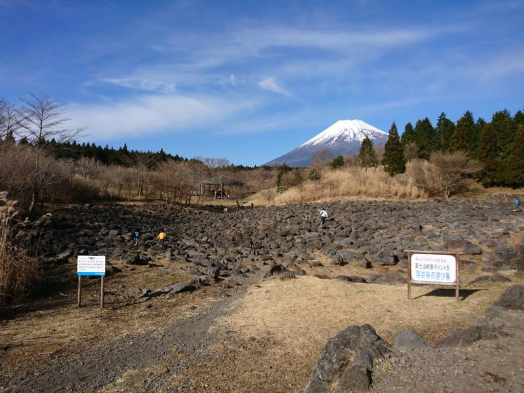 富士山を眺めながら巨大草原でリラックス(富士山こどもの国)